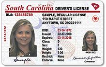 SearchBug - Driver's License Search