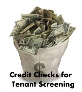 """""""Credit Checks for Tenant Screening"""""""