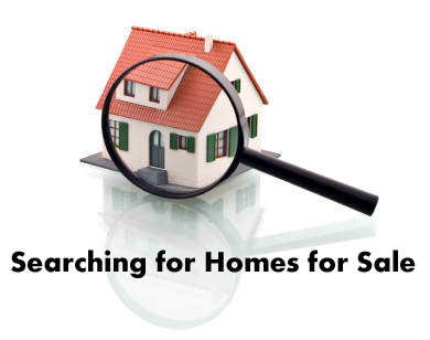 Searching for Homes for Sale