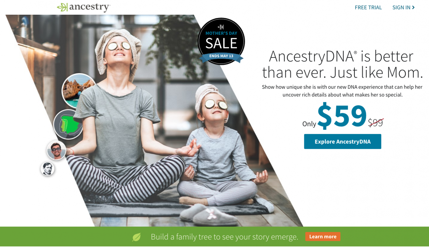 Ancestry.com was the first of the online people searches to offer family tree building.